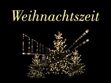 Weihnachtszeit im Lyssbachpark